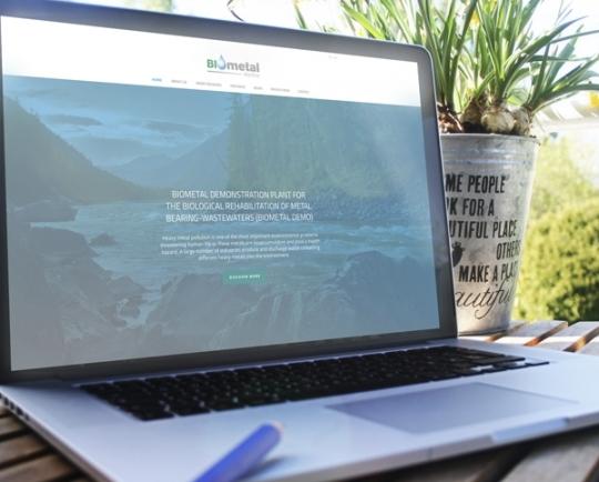 """Web para Proyecto de investigacion """"BIOMETALDEMO"""""""