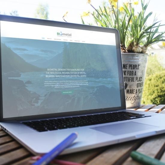 Web para Proyecto de investigacion «BIOMETALDEMO»